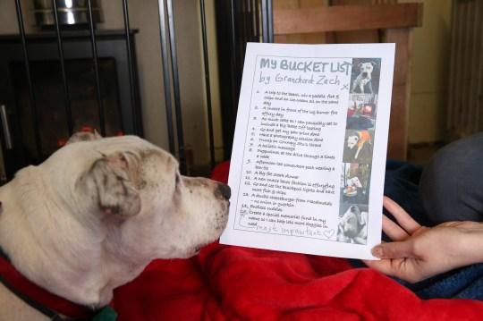 Grandad Zach with his bucket list