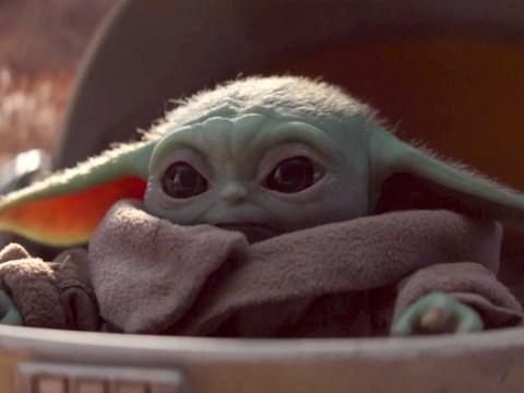 Disney Plus UK viewers demand box set for Star Wars series The Mandalorian