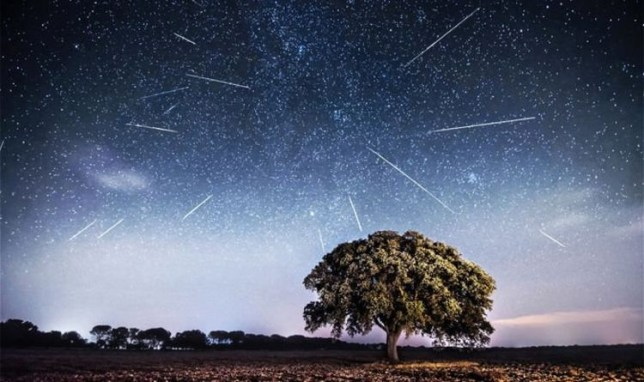 The Quadrantids meteor shower could bring in up to 60 meteors an hour (Getty)