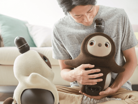 Is this the world's cutest robot? Cuddly droid called Lovot released at CES 2020