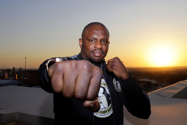 Heavyweight boxer Dillian Whyte
