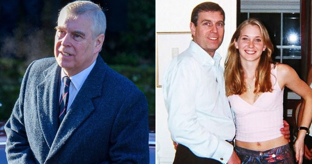 The Duke of York's alleged messages appear to question Virginia Giuffre's credibility