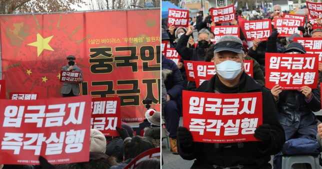 comp of anti-china protests