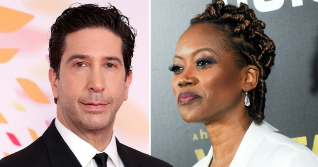 David Schwimmer and Erika Alexander