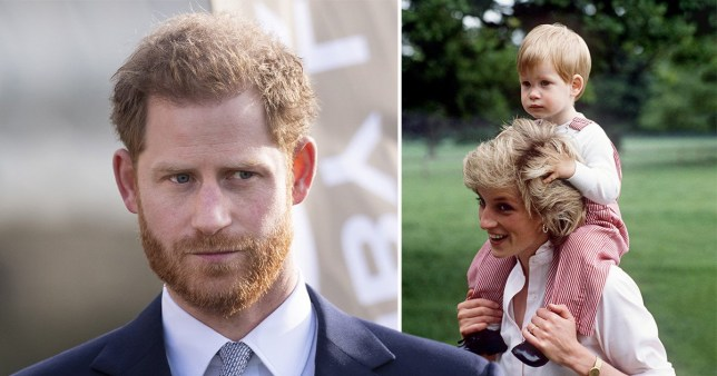 Prince Harry revealed he is in therapy to cope with the tragic death of his mother Princess Diana