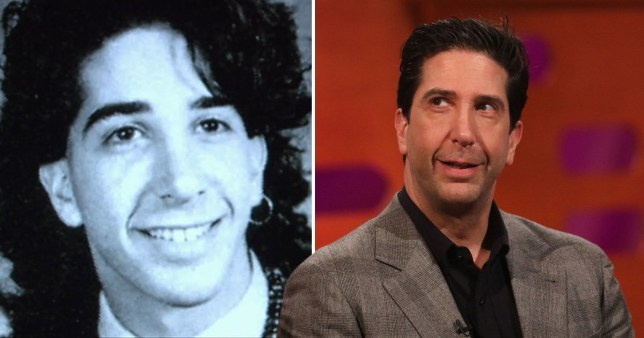 Caption: What David Schwimmer did before Friends