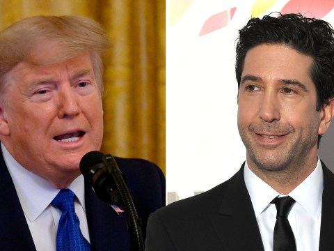 Friends star David Schwimmer's new comedy Intelligence is 'reminiscent of politicians of our time'