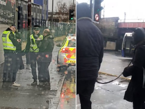 Man takes woman in 'dog gimp suit' for a walk in Glasgow