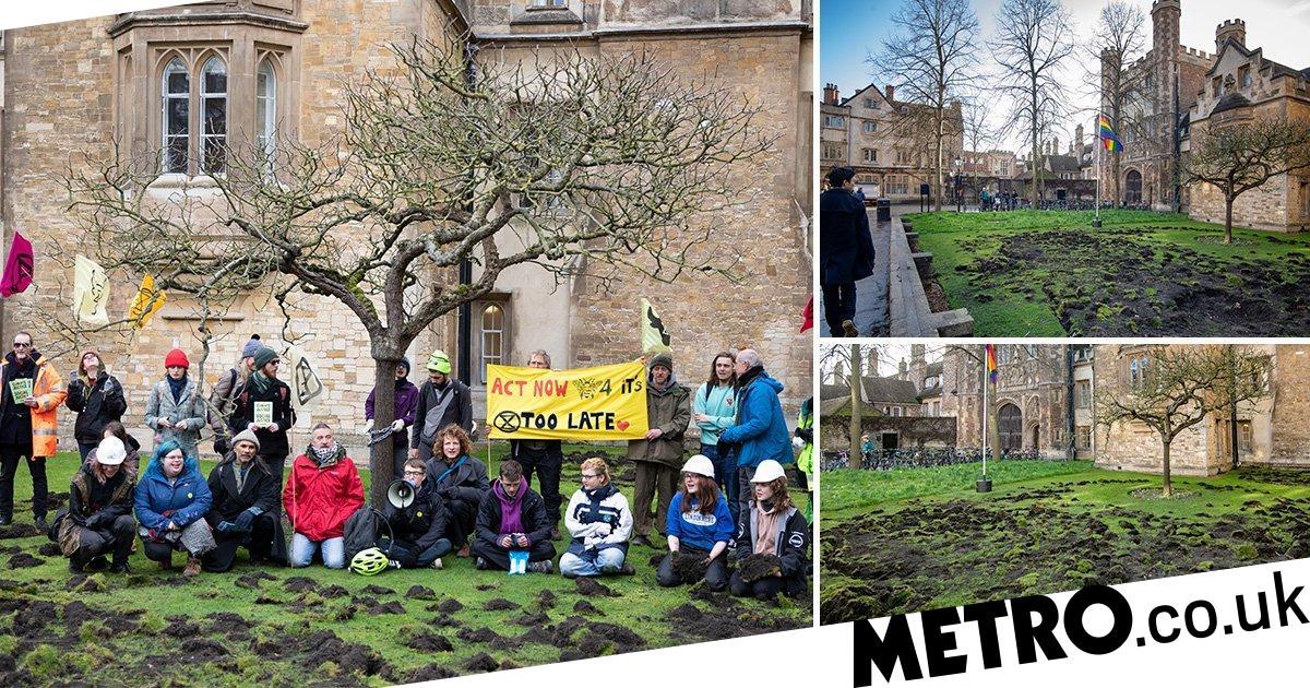 Extinction Rebellion rip up Cambridge University lawn