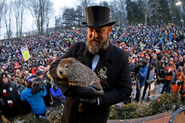 A still from Groundhog Day 2019 ceremony