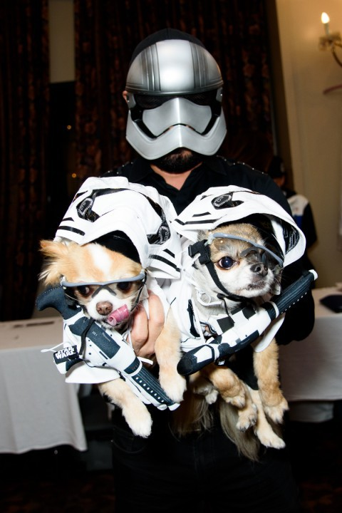 Someone wearing a stormtrooper outfit and holding two dogs in matching outfits at the New York Pet Fashion Show