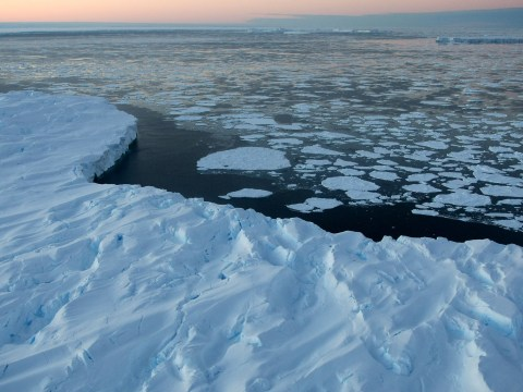 Antarctica hits hottest temperature on record as glaciers melt at rapid rate