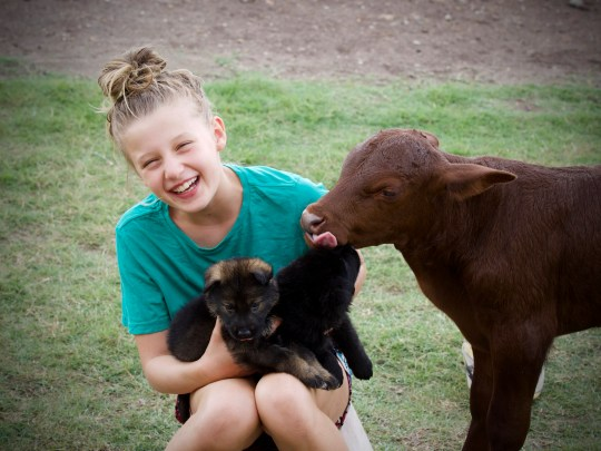 Bella with Buddy and the puppies (Picture: Mercury Press & Media)
