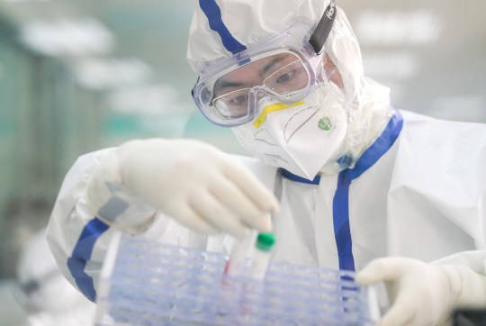 A staff member works in a laboratory in Wuhan