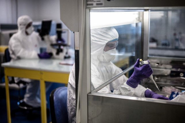 """Scientists are at work in the VirPath university laboratory, classified as """"P3"""" level of safety, on February 5, 2020 as they try to find an effective treatment against the new SARS-like coronavirus, which has already caused more than 560 deaths. - When most are busy developing vaccines or testing the few anti-virals available, VirPath will go after drugs used for diseases that have nothing to do with a respiratory infection such as 2019-nCoV. (Photo by JEFF PACHOUD / AFP) (Photo by JEFF PACHOUD/AFP via Getty Images)"""