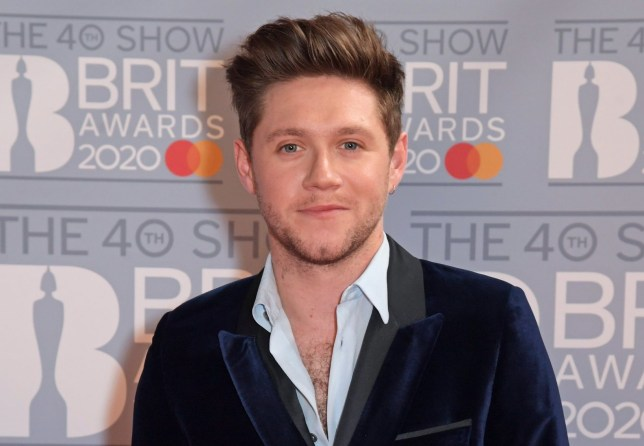 LONDON, ENGLAND - FEBRUARY 18: (EDITORIAL USE ONLY) Niall Horan attends The BRIT Awards 2020 at The O2 Arena on February 18, 2020 in London, England. (Photo by David M. Benett/Dave Benett/Getty Images)