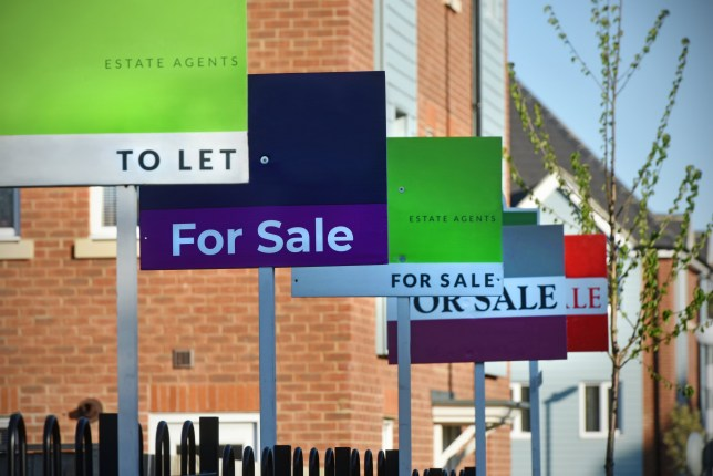 Generic For Sale and To Let Estate Agent (realtor) signs lined up outside a UK new build housing estate