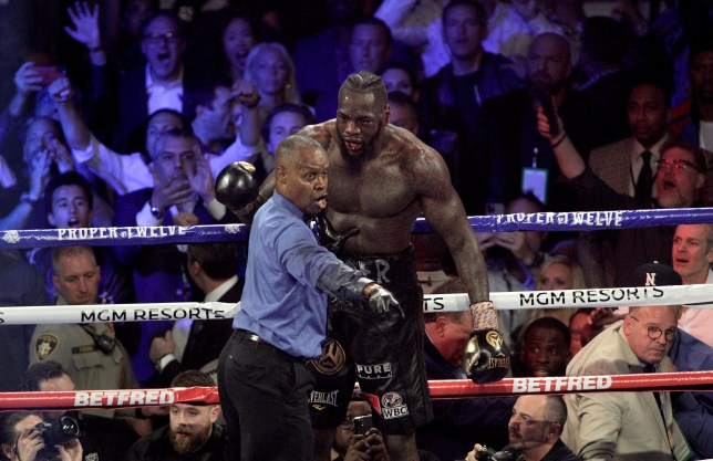 Referee Kenny Bayless admits he was close to stopping Deontay Wilder 's fight with Tyson Fury