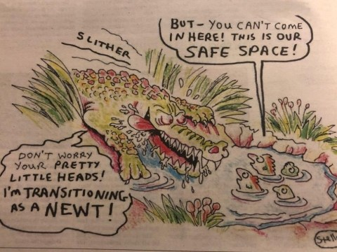 Newspaper apologises after transphobic cartoon sparks outrage
