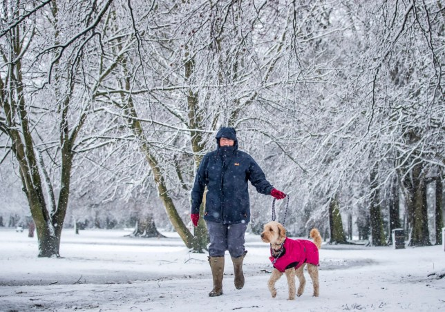 A woman walks a dog in snowy conditions in Bedale, North Yorkshire