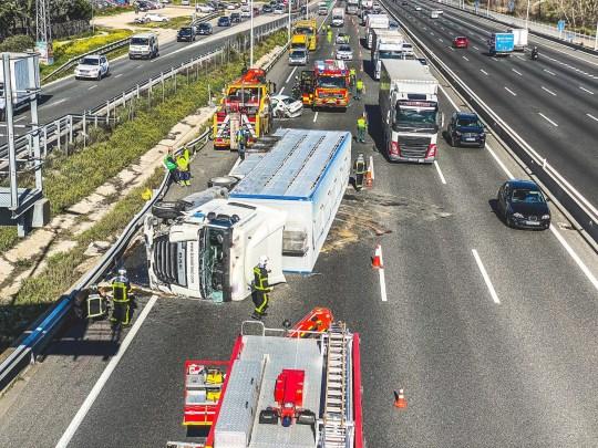 Un camion che trasporta maiali si ribalta sull'autostrada A6 a Las Rozas, Spagna (Photo: @ 112cmadrid)