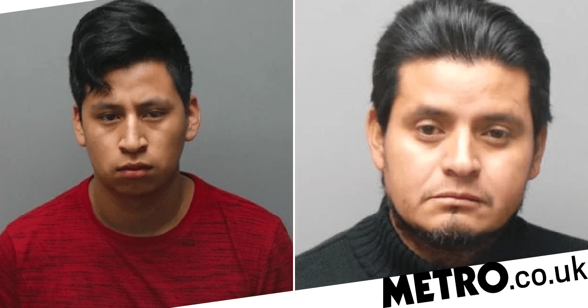 Teen 'admits to raping his 11-year-old relative 100 times and impregnating her'