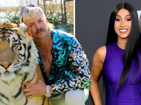 Netflix's Tiger King: Cardi B gets lost watching Joe Exotic saga because she started 'f**king'