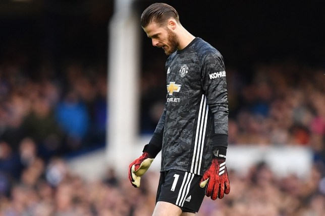 David de Gea after his howler in Manchester United's Premier League clash with Everton