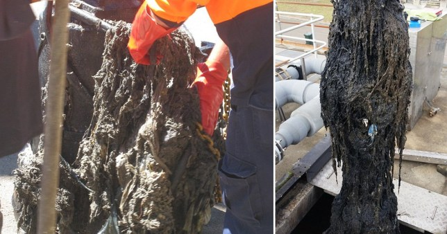 A 14 tonne fatberg was pulled from a sewer in Oz after toilet roll panic buying led to an increase in wet wipes