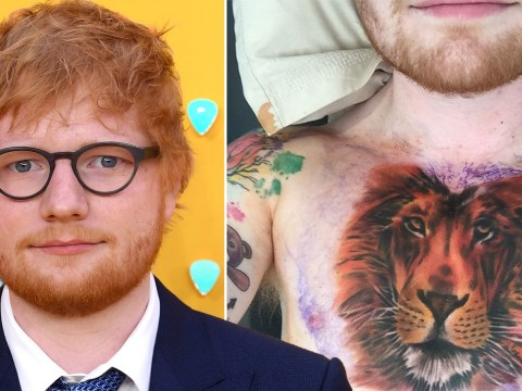 Ed Sheeran's tattoo artist reveals he was offered £300k for the art rights to that lion tattoo… and it's set to be on show at an exhibition