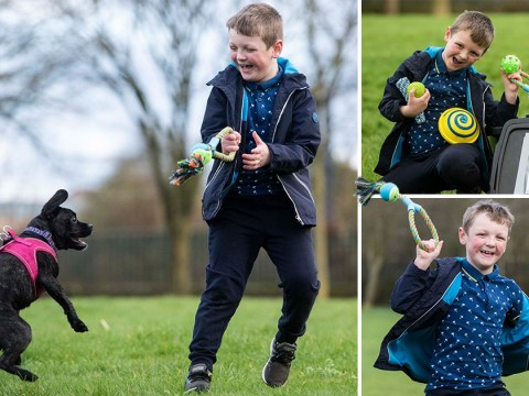 Boy leaves boxes filled with dog toys for strangers to use in the park