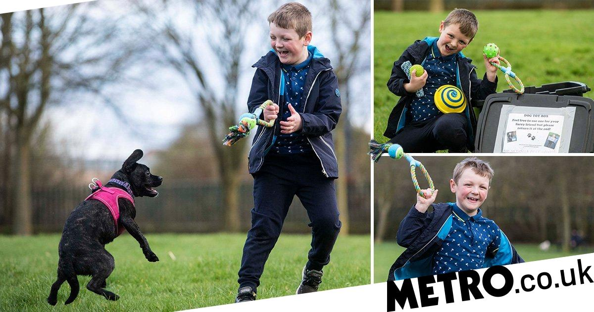Six-year-old creates dog toy boxes for strangers to use in the park