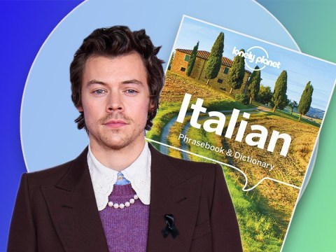 Harry Styles is learning Italian and doing face masks as he nails self-isolation self-care