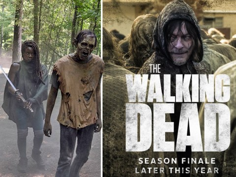 When is The Walking Dead season 10 finale and will there be another series?