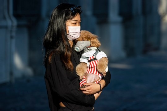 epa08234160 A woman wearing a face mask holds her dog, also wearing a face mask, in Guangzhou, Guangdong, China, 21 February 2020. The disease COVIDF-19, caused by coronavirus SARS-CoV-2, has so far killed 2,247 people with over 76,200 infected worldwide. EPA/ALEX PLAVEVSKI