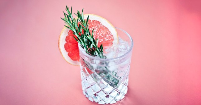 Close-up of a glass of gin and tonic with a slice of pink grapefruit and sprigs of rosemary on a pink background