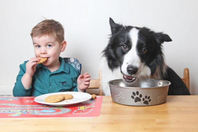 Jenson and Fenn eating together at the table at home