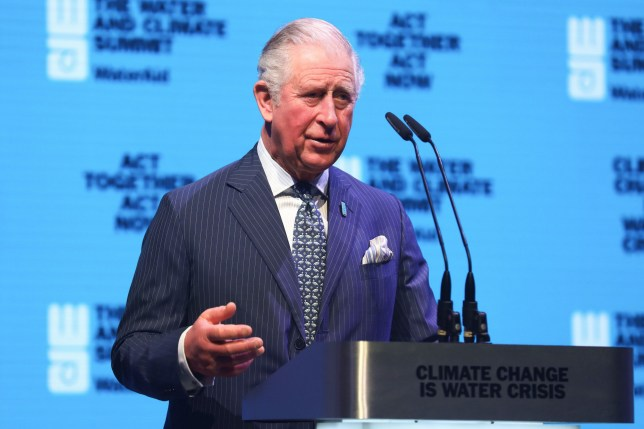 The Prince of Wales attends the WaterAid charity's Water and Climate event in London.