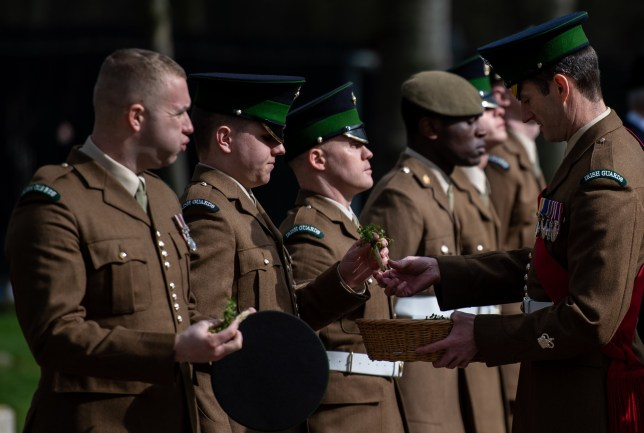 The Irish Guards form up and place shamrocks on their clothing before parading to mark St. Patrick's Day