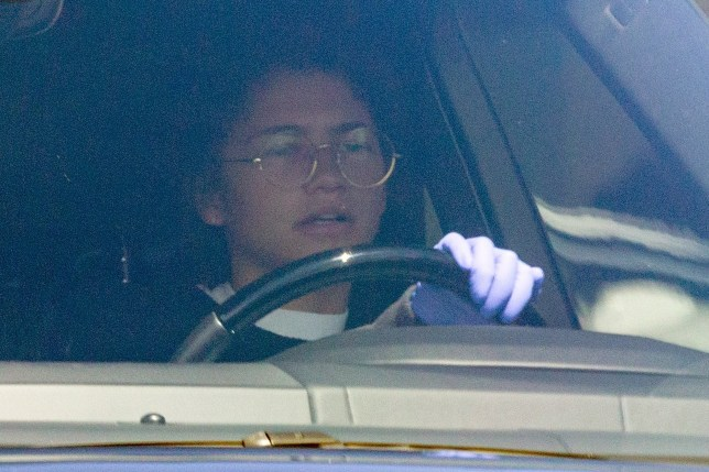 Los Angeles, CA - *EXCLUSIVE* - Actress Zendaya wears purple latex gloves as she goes shopping for canned foods and essentials with her brother Austin in LA amid coronavirus outbreak concerns. The actress shopped at Smart & Final and Bed Bath & Beyond in Los Angeles. Pictured: Zendaya BACKGRID USA 17 MARCH 2020 USA: +1 310 798 9111 / usasales@backgrid.com UK: +44 208 344 2007 / uksales@backgrid.com *UK Clients - Pictures Containing Children Please Pixelate Face Prior To Publication*