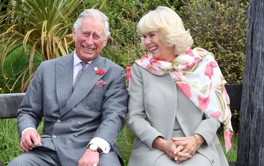 DUNEDIN, NEW ZEALAND - NOVEMBER 5: Prince Charles, Prince of Wales and Camilla, Duchess of Cornwall continue to laugh after a bubble bee took a liking to Prince Charles during their visit to the Orokonui Ecosanctuary on November 5, 2015 in Dunedin, New Zealand. The Royal couple are on a 12-day tour visiting seven regions in New Zealand and three states and one territory in Australia. (Photo by Rob Jefferies/Getty Images)