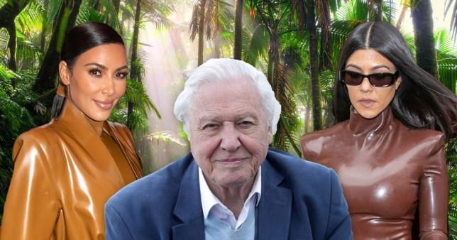 Kim Kardashian Kourtney David Attenborough Pics: Getty