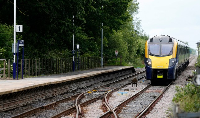 First Hull train at Howden. PRESS ASSOCIATION Photo. Picture date: Wednesday June 17, 2015. See PA story . Photo credit should read: Lynne Cameron/PA Wire