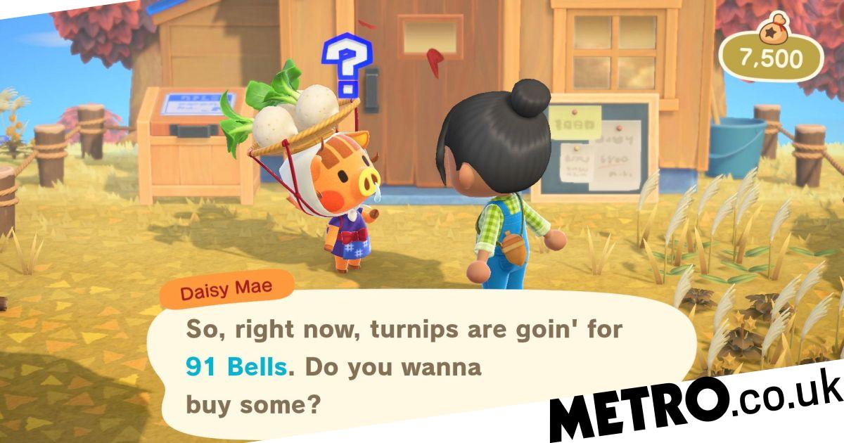 Animal Crossing: New Horizons how to make money from ...