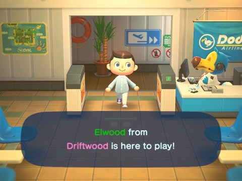 Elijah Wood turns up in fan's Animal Crossing: New Horizons game, picks her fruit