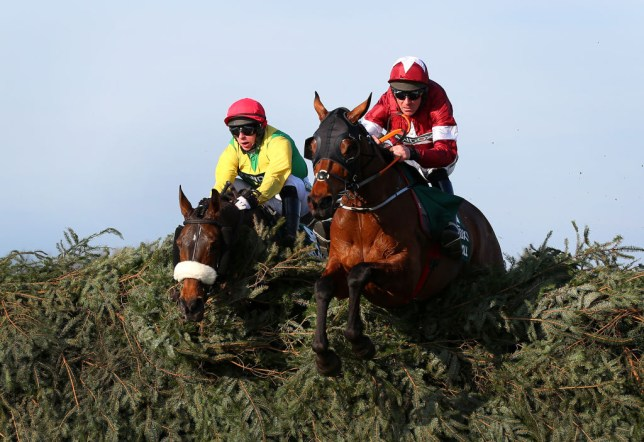 Davy Russell riding Tiger Roll