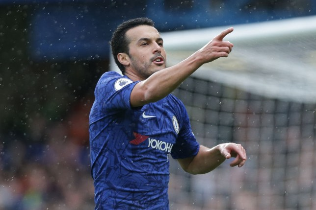Pedro playing for Chelsea