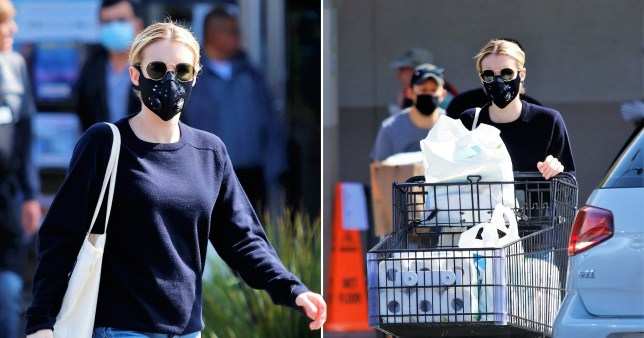 Emma Roberts shopping for toilet roll and cleaning products