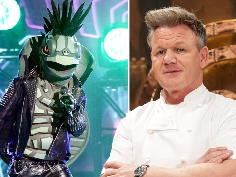 Masked Singer judge Gordon Ramsay rips into Turtle's food clue: 'Do you want the runs?'