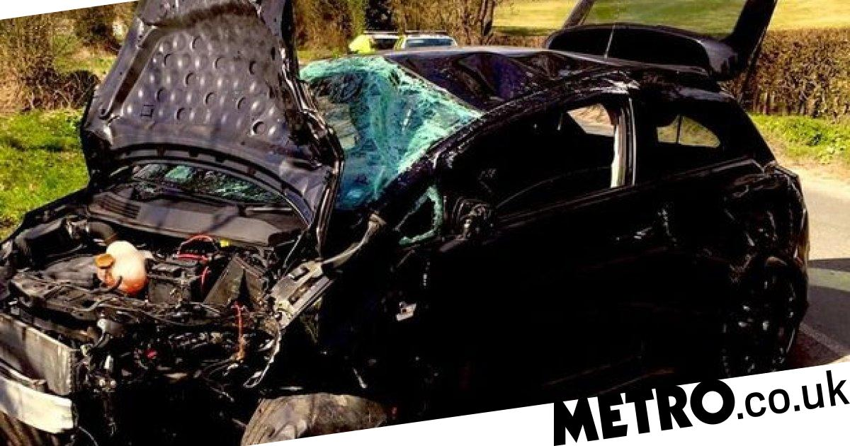 Friends crashed car 'after driving 10 miles to walk their dog'